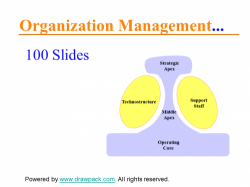Organisations Management