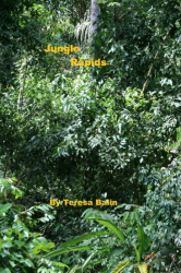 Jungle Rapids