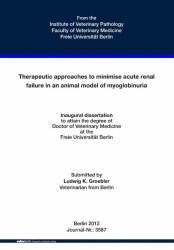 Therapeutic approaches to minimise acute renal failure in