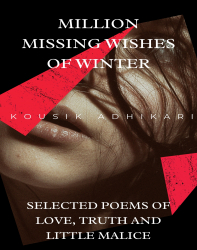 Million Missing Wishes of Winter