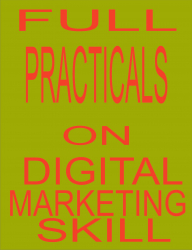 FULL PRACTICALS ON DIGITAL MARKETING SKILL
